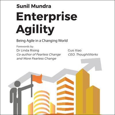 Enterprise Agility: Being Agile In a Changing World Audiobook, by Sunil Mundra