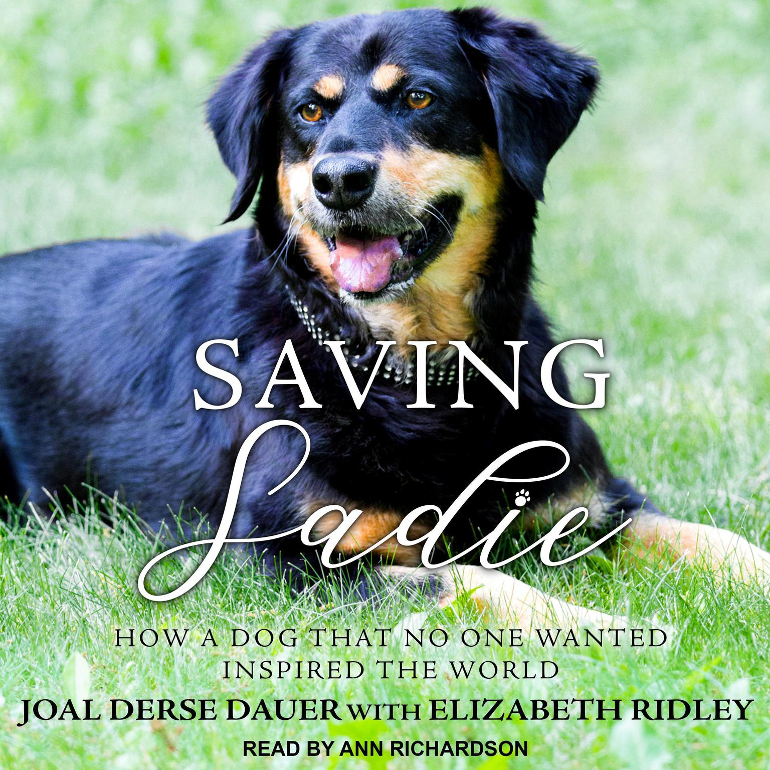 Printable Saving Sadie: How a Dog That No One Wanted Inspired the World Audiobook Cover Art