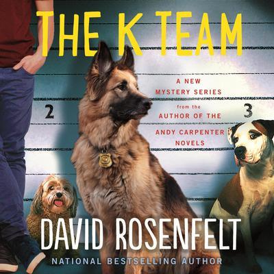 The K Team Audiobook, by David Rosenfelt