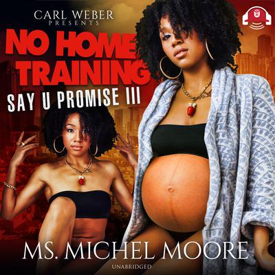 No Home Training Audiobook, by