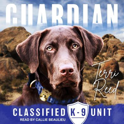Guardian Audiobook, by