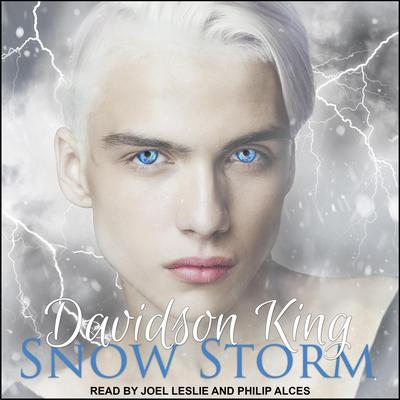 Snow Storm Audiobook, by