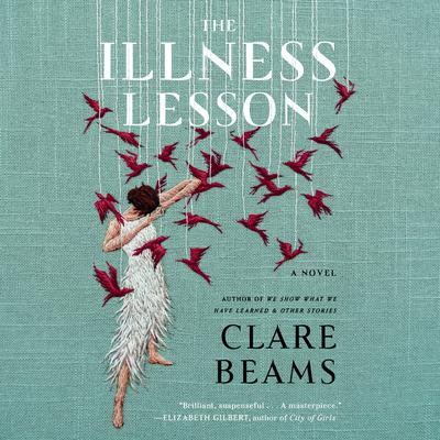 The Illness Lesson: A Novel Audiobook, by