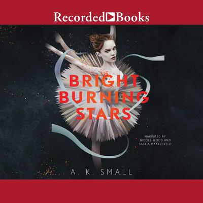 Bright Burning Stars Audiobook, by A.K. Small