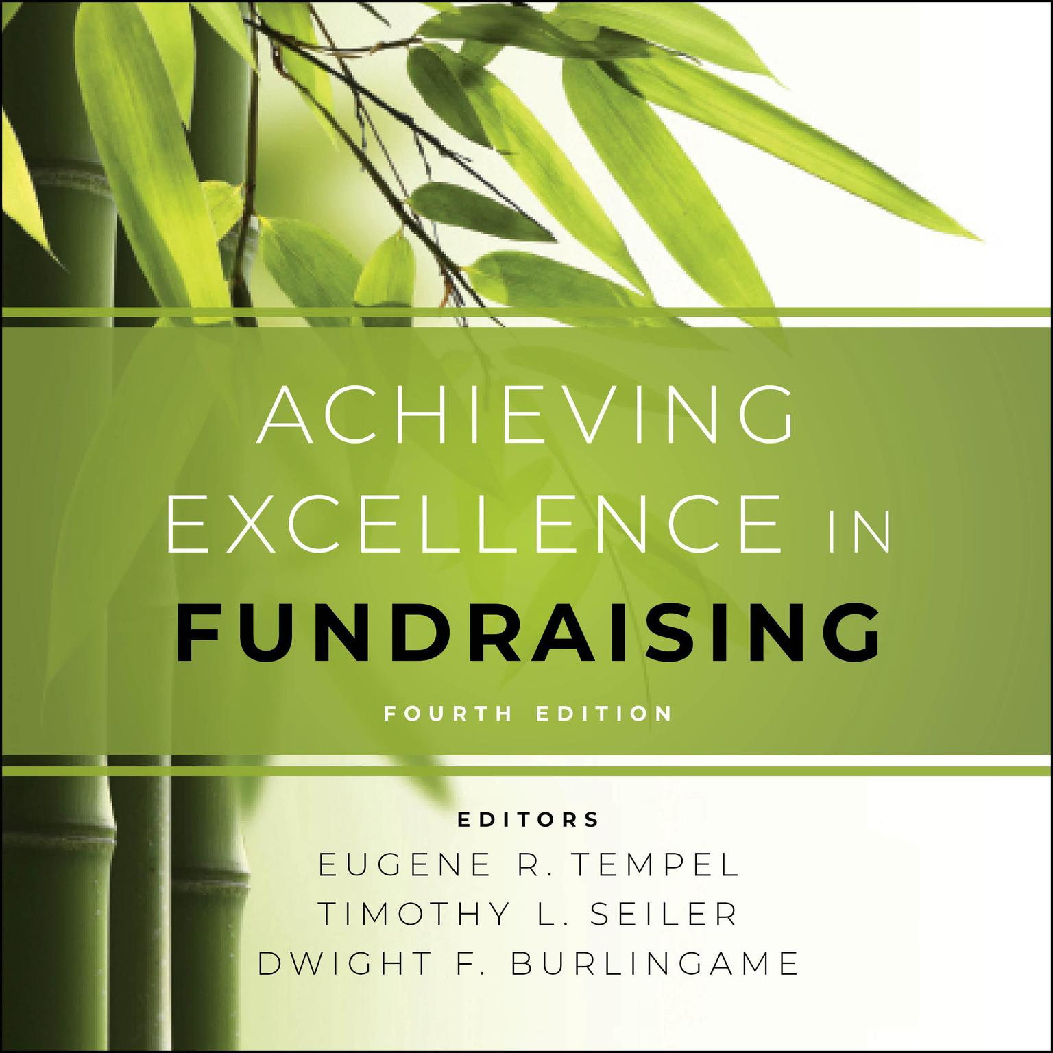 Printable Achieving Excellence in Fundraising: 4th Edition Audiobook Cover Art