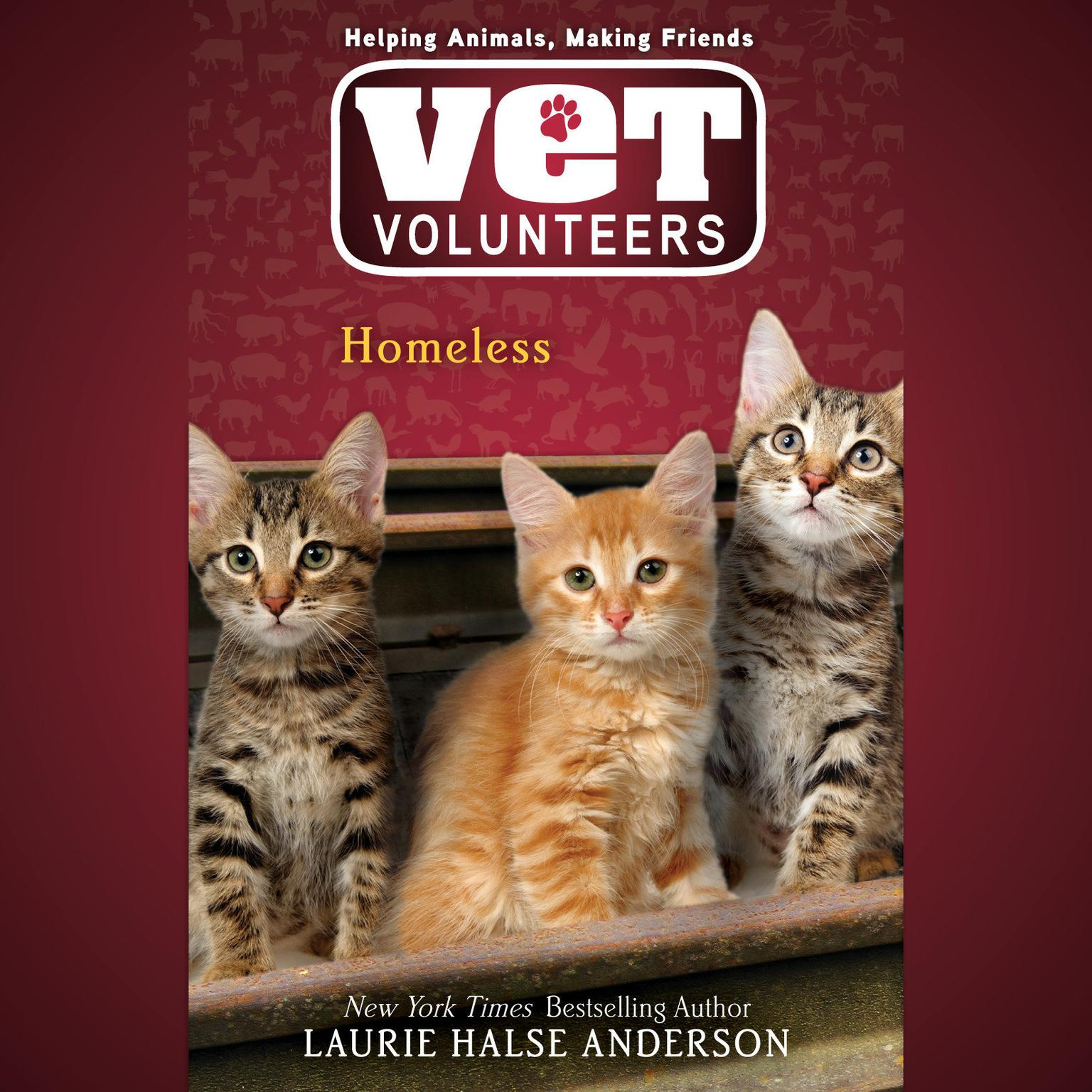 Printable Homeless #2 Audiobook Cover Art