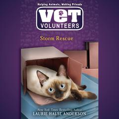 Storm Rescue #6 Audiobook, by Laurie Halse Anderson