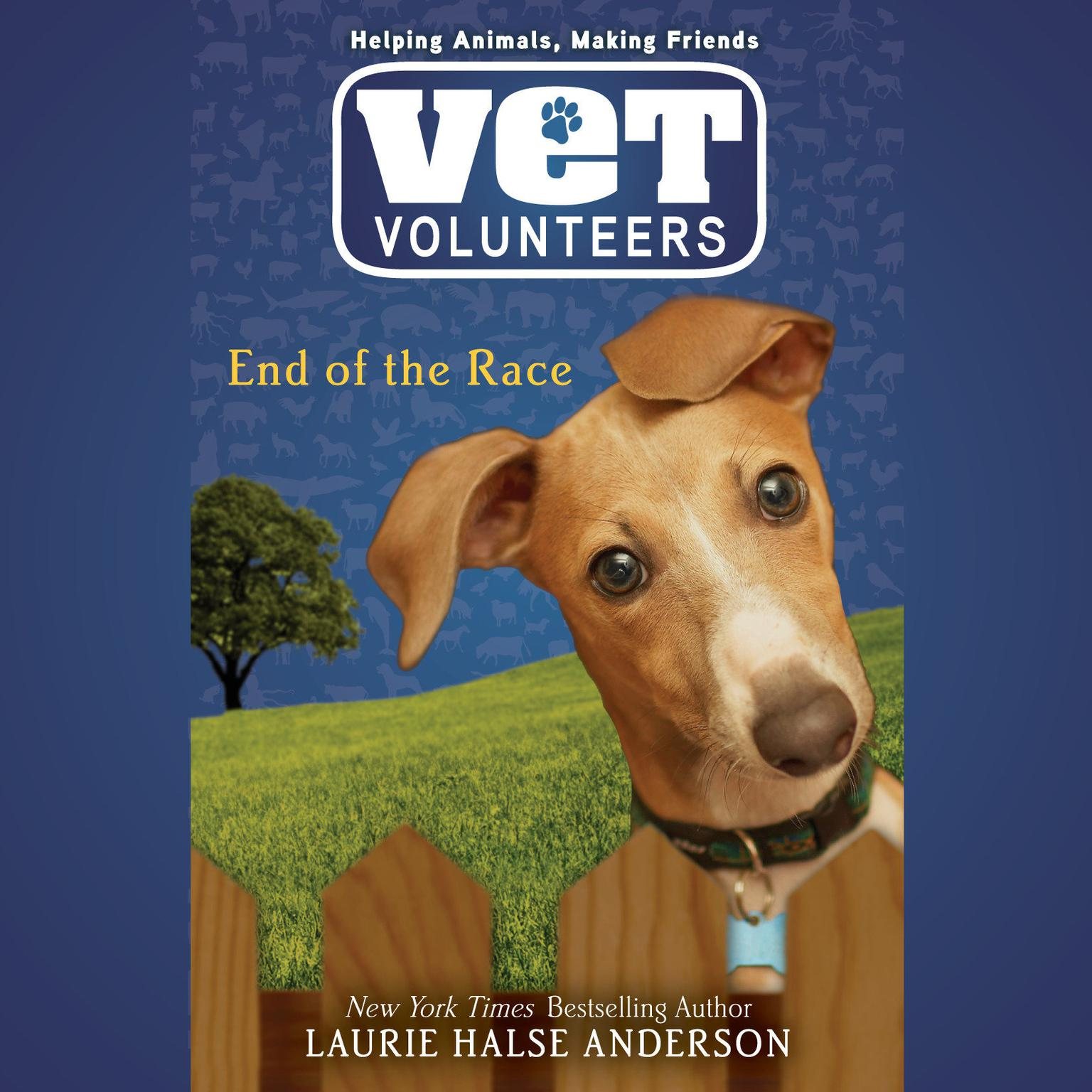 Printable End of the Race #12 Audiobook Cover Art
