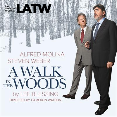 A Walk in the Woods Audiobook, by Lee Blessing