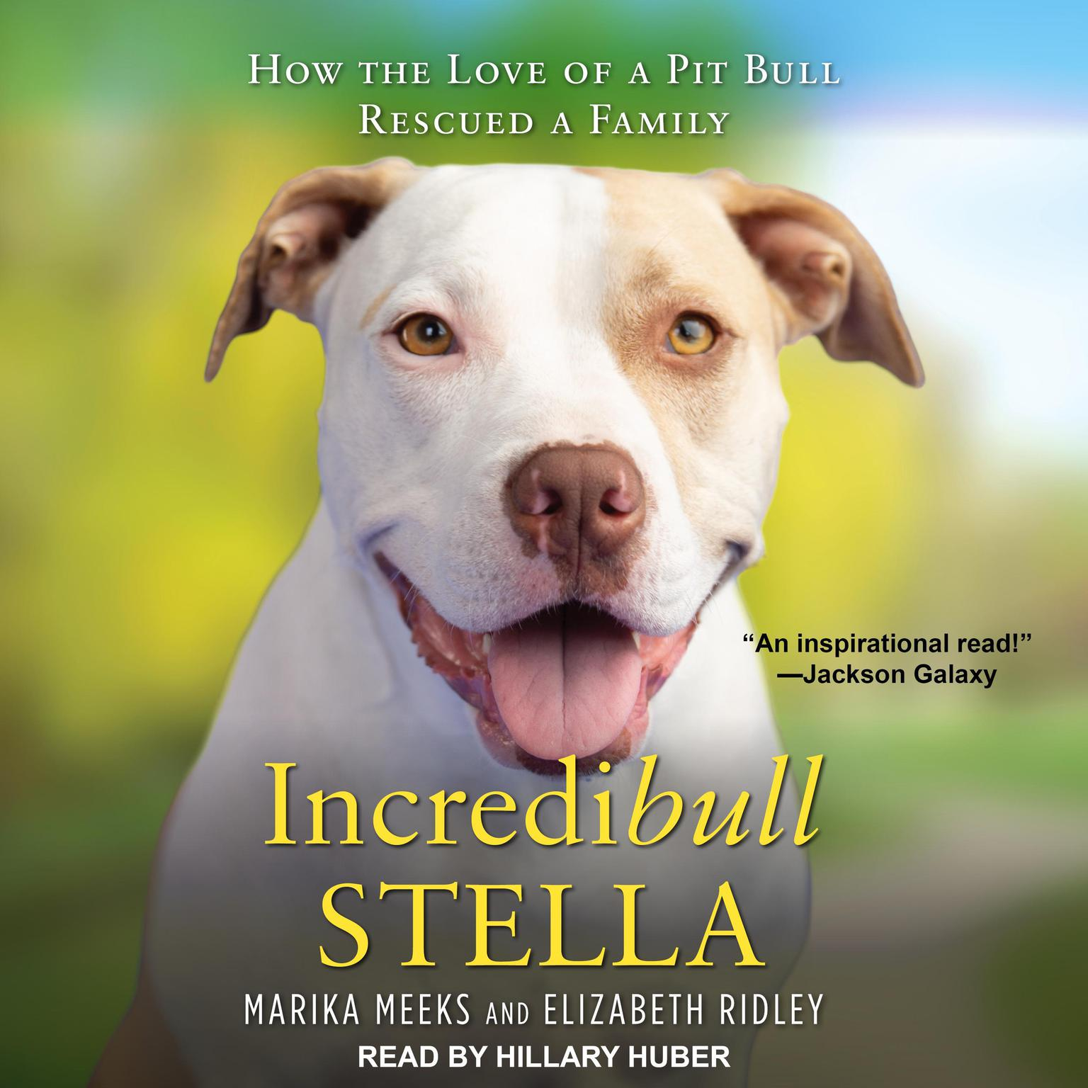 Printable Incredibull Stella: How the Love of a Pit Bull Rescued a Family Audiobook Cover Art