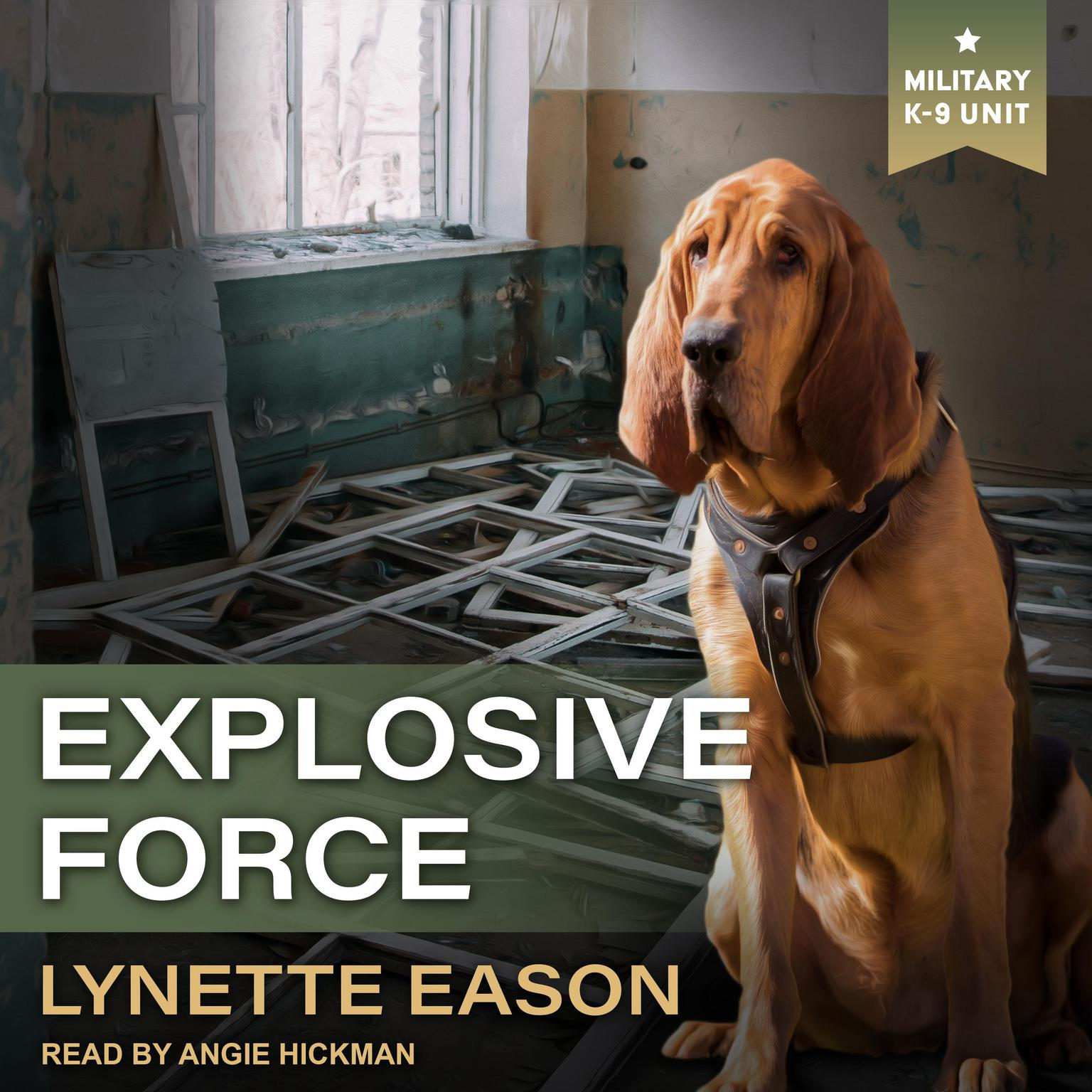Printable Explosive Force Audiobook Cover Art