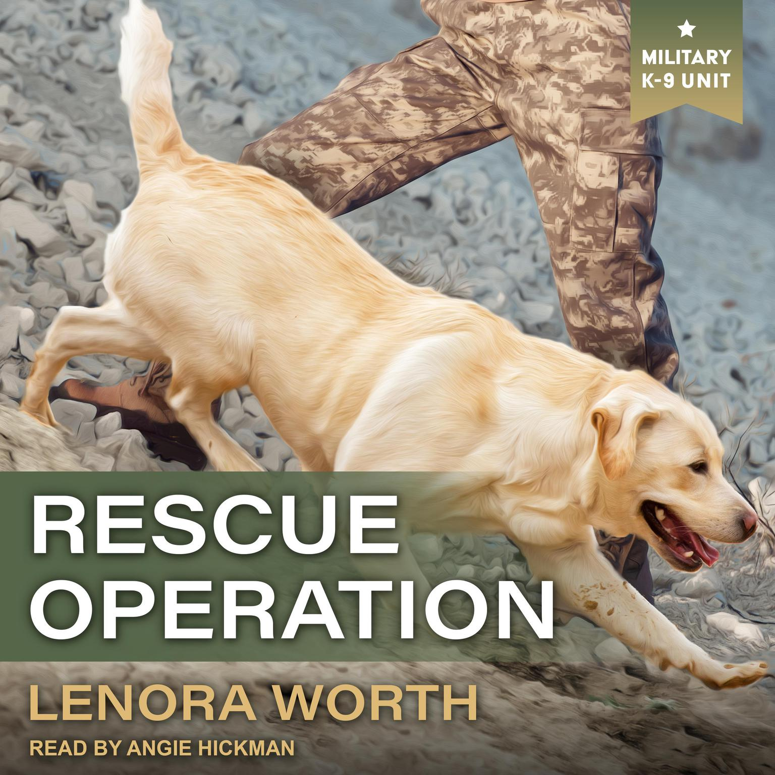 Printable Rescue Operation Audiobook Cover Art