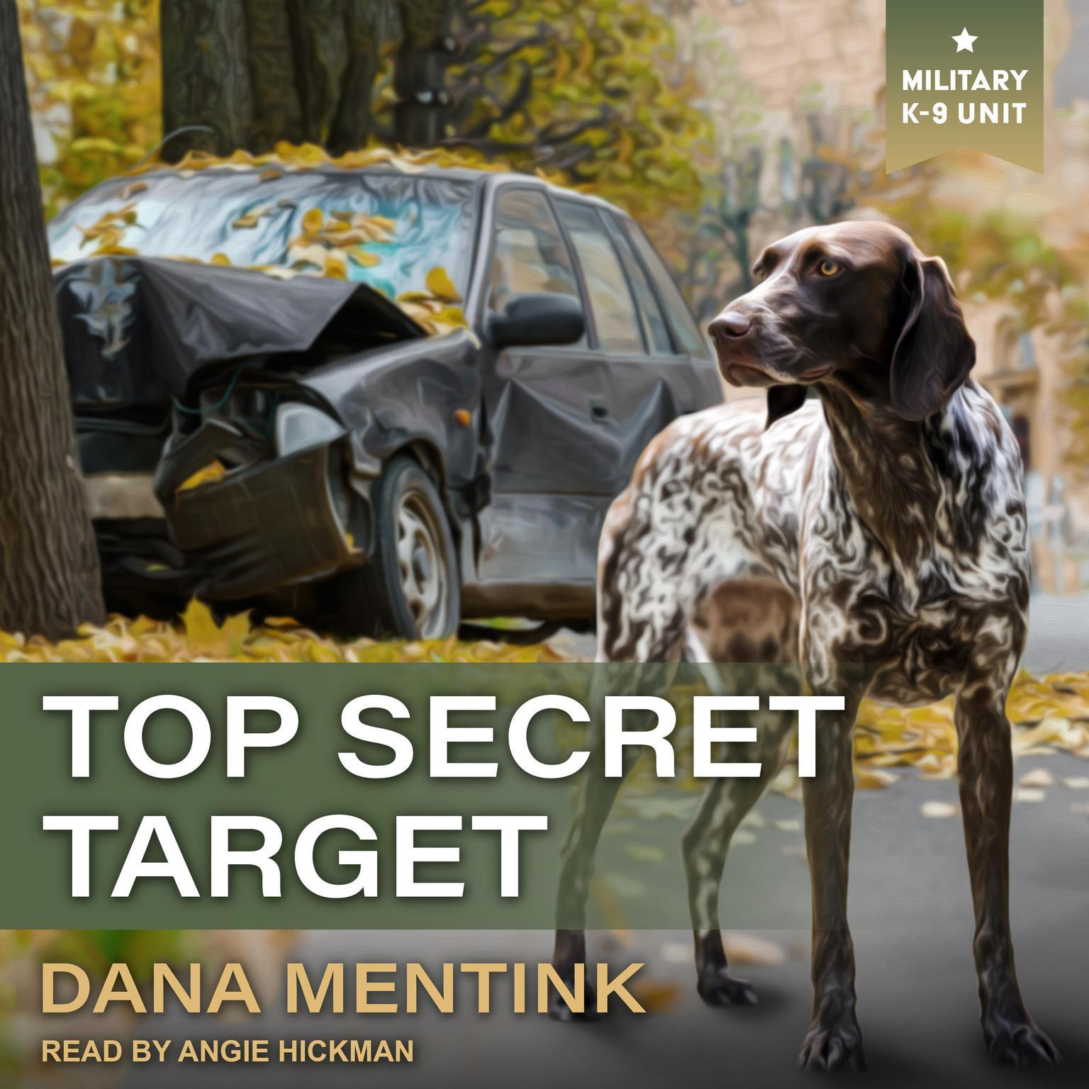 Printable Top Secret Target Audiobook Cover Art