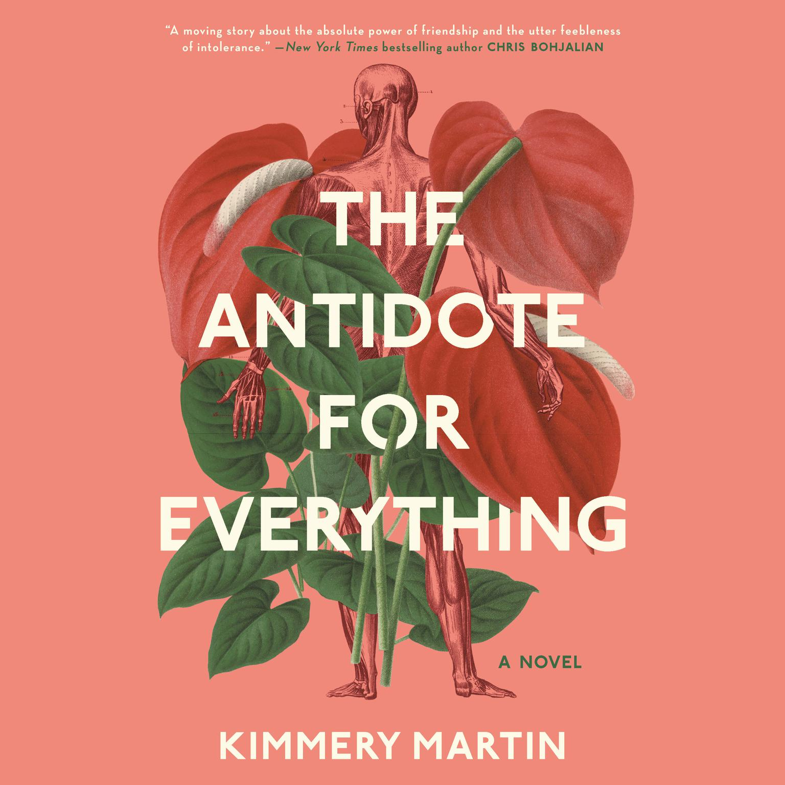Printable The Antidote for Everything Audiobook Cover Art