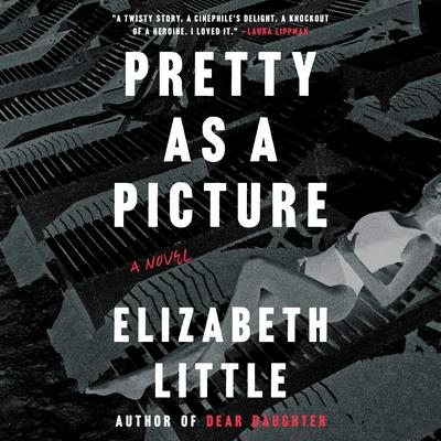 Pretty as a Picture: A Novel Audiobook, by Elizabeth Little