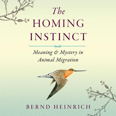 The Homing Instinct: Meaning and Mystery in Animal Migration Audiobook, by Bernd Heinrich