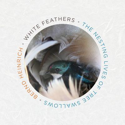 White Feathers: The Nesting Lives of Tree Swallows Audiobook, by Bernd Heinrich