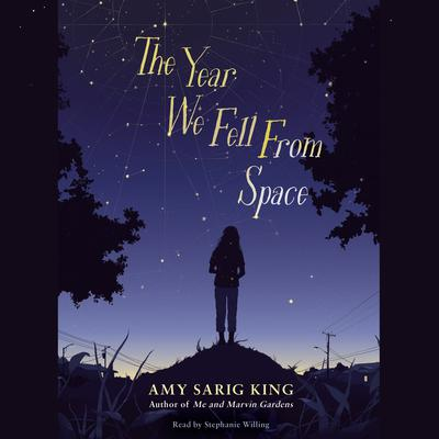 The Year We Fell from Space Audiobook, by