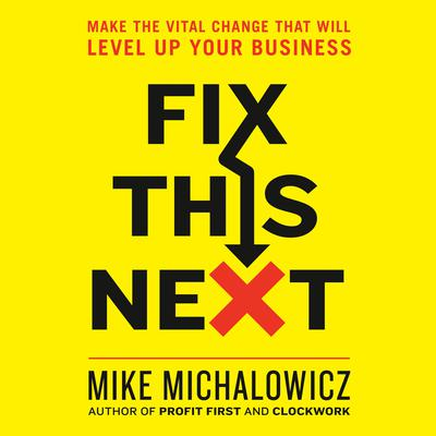 Fix This Next: Make the Vital Change That Will Level Up Your Business Audiobook, by