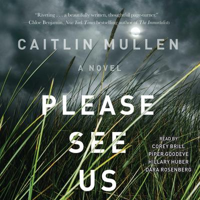 Please See Us Audiobook, by Caitlin Mullen
