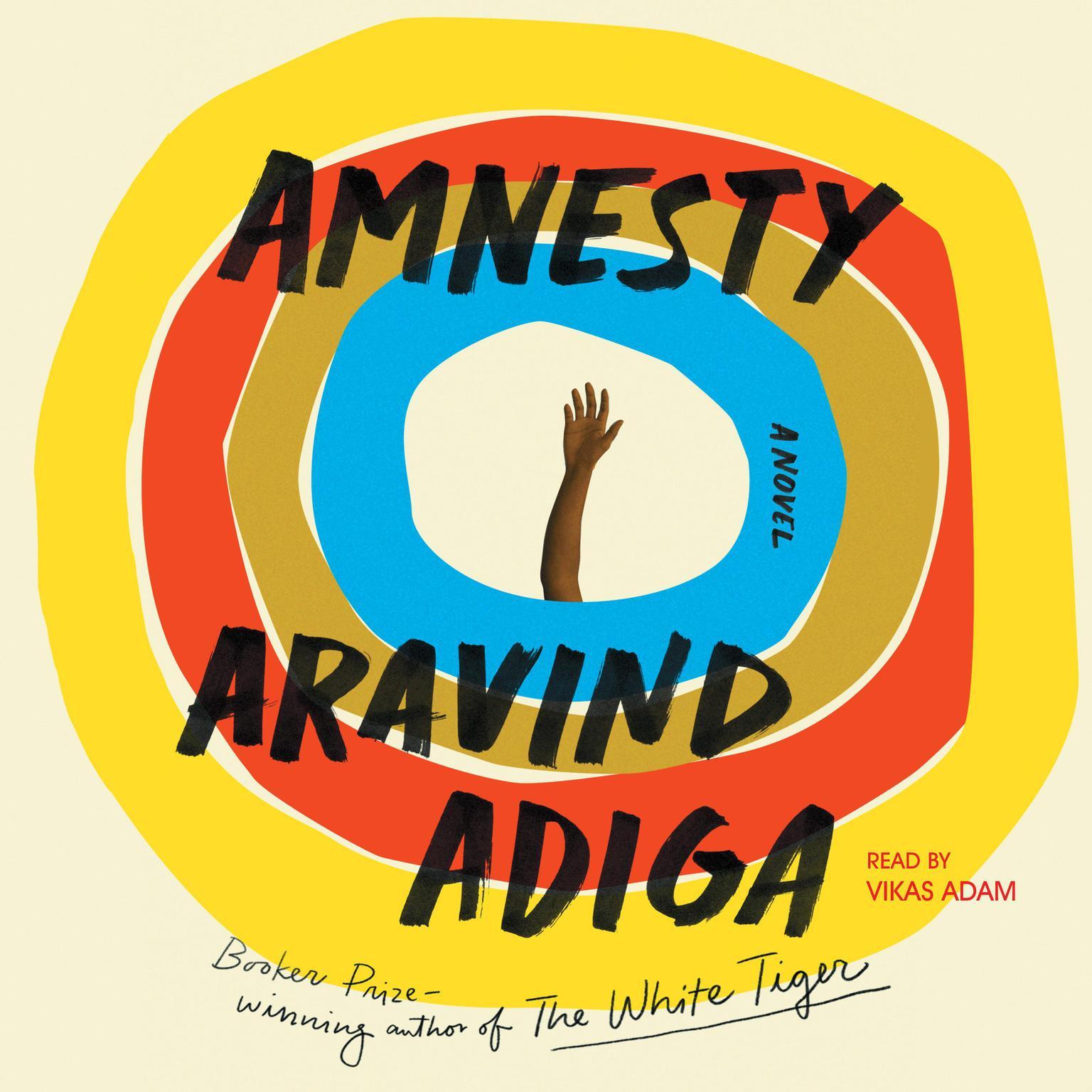 Printable Amnesty: A Novel Audiobook Cover Art