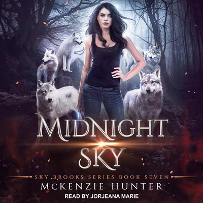 Midnight Sky Audiobook, by McKenzie Hunter