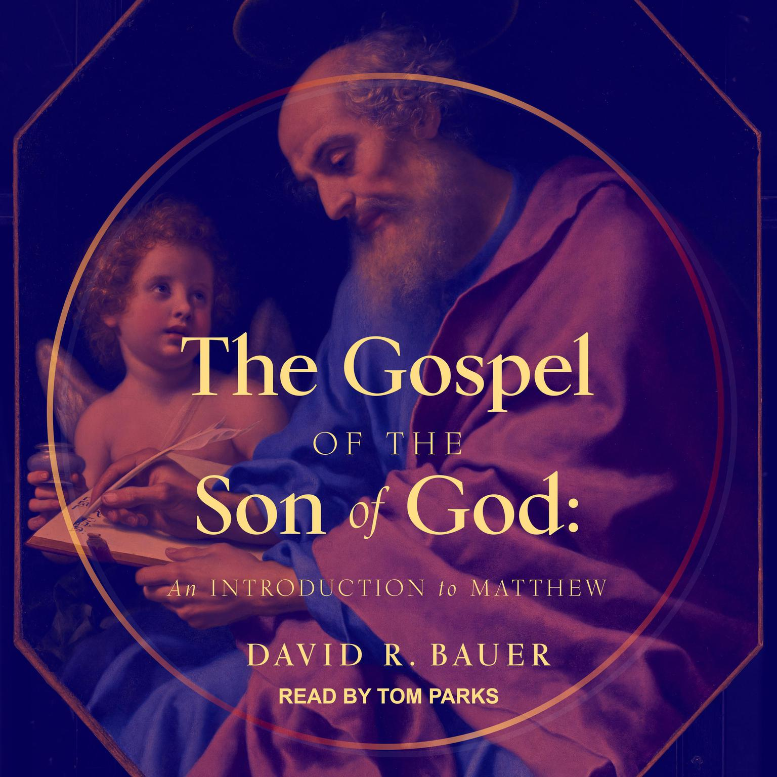 The Gospel of the Son of God: An Introduction to Matthew Audiobook, by David Bauer