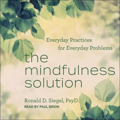 The Mindfulness Solution: Everyday Practices for Everyday Problems Audiobook, by
