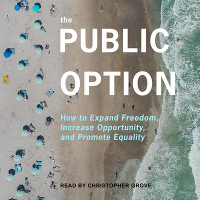 The Public Option: How to Expand Freedom, Increase Opportunity, and Promote Equality Audiobook, by Ganesh Sitaraman