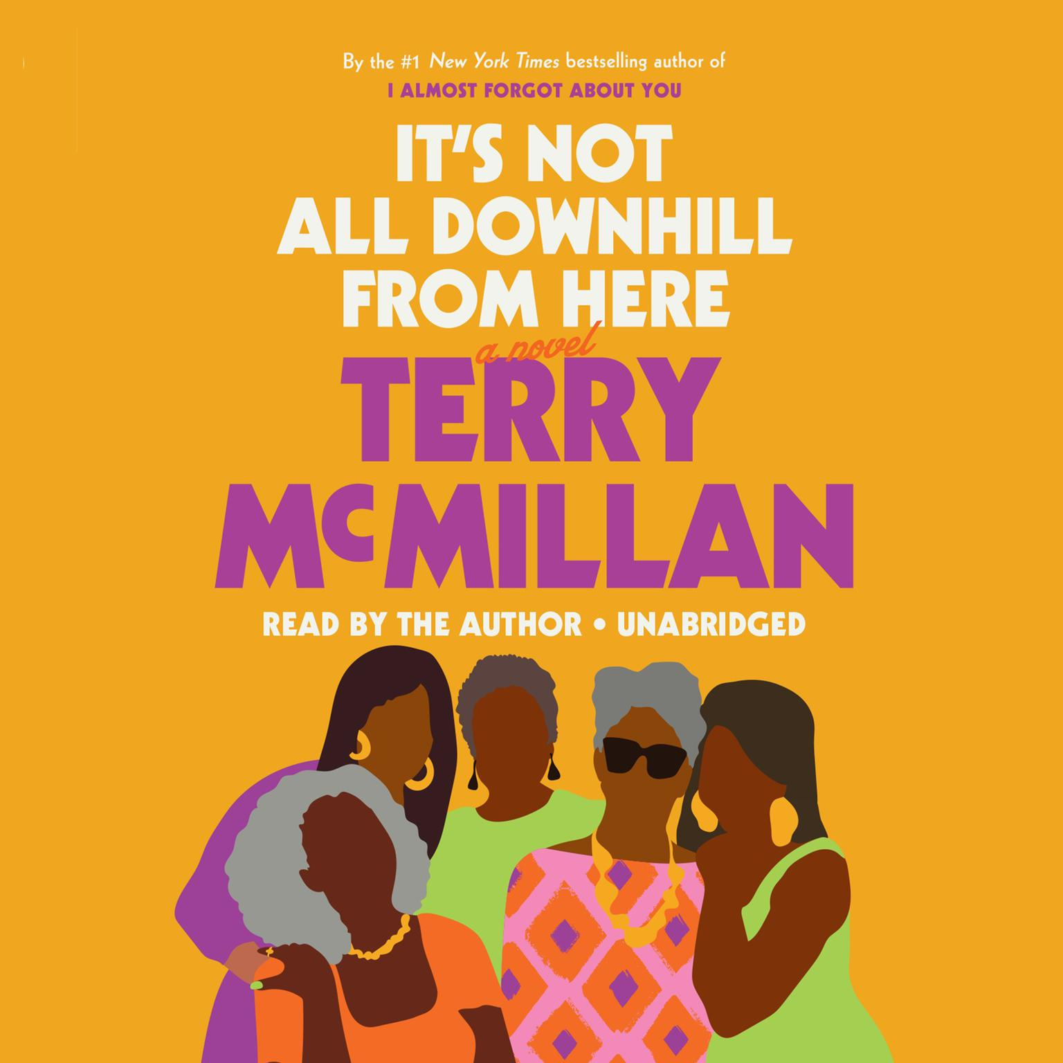 Printable It's Not All Downhill from Here: A Novel Audiobook Cover Art