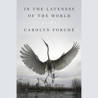 In the Lateness of the World: Poems Audiobook, by