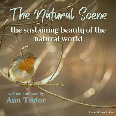 The Natural Scene Audiobook, by Ann Tudor