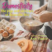 Domesticity Audiobook, by Ann Tudor