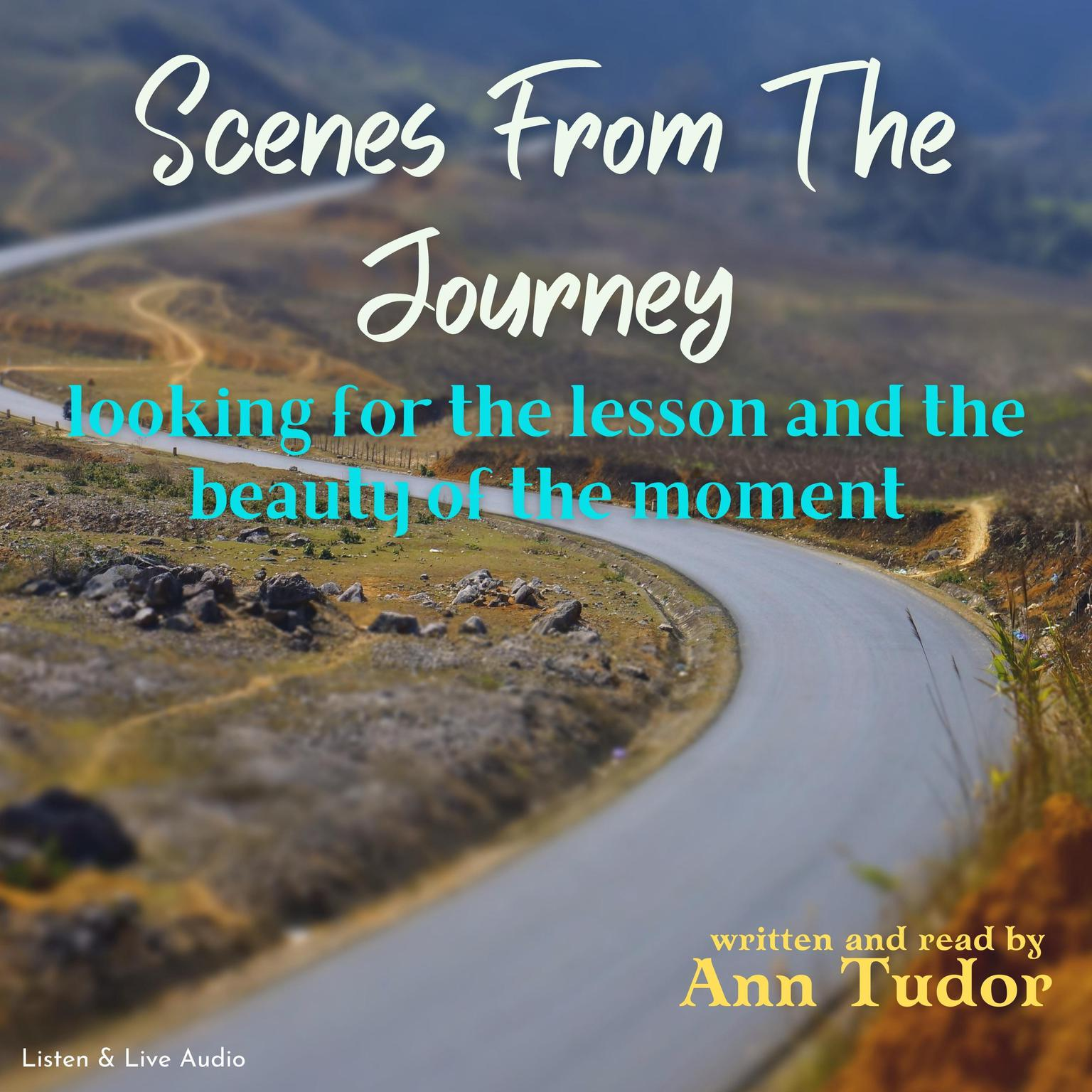 Printable Scenes from the Journey Audiobook Cover Art