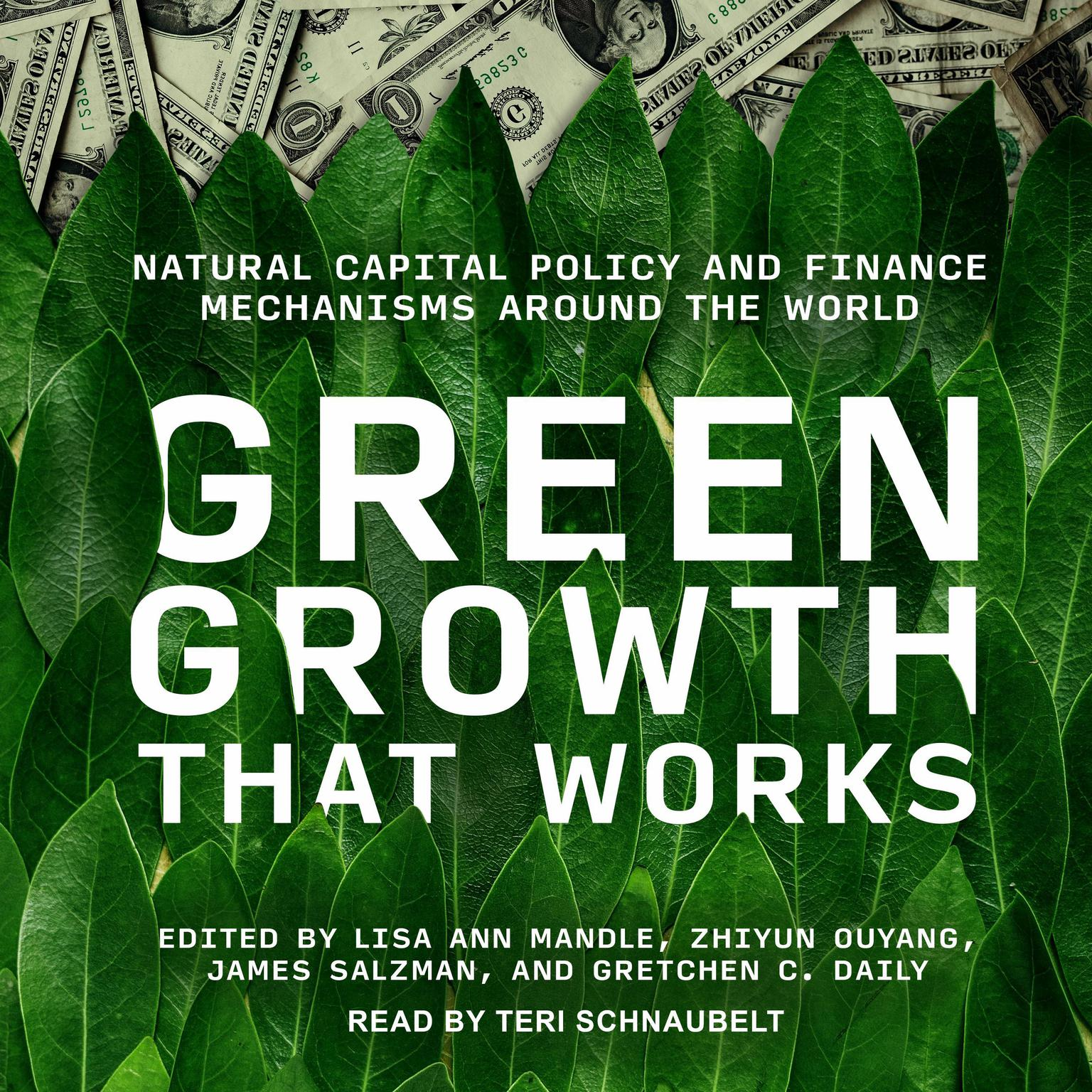 Printable Green Growth That Works: Natural Capital Policy and Finance Mechanisms Around the World Audiobook Cover Art