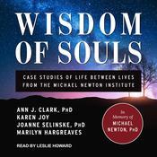 Wisdom of Souls: Case Studies of Life Between Lives From The Michael Newton Institute Audiobook, by Ann J. Clark, Joanne Selinske, Karen Joy, Marilyn Hargreaves