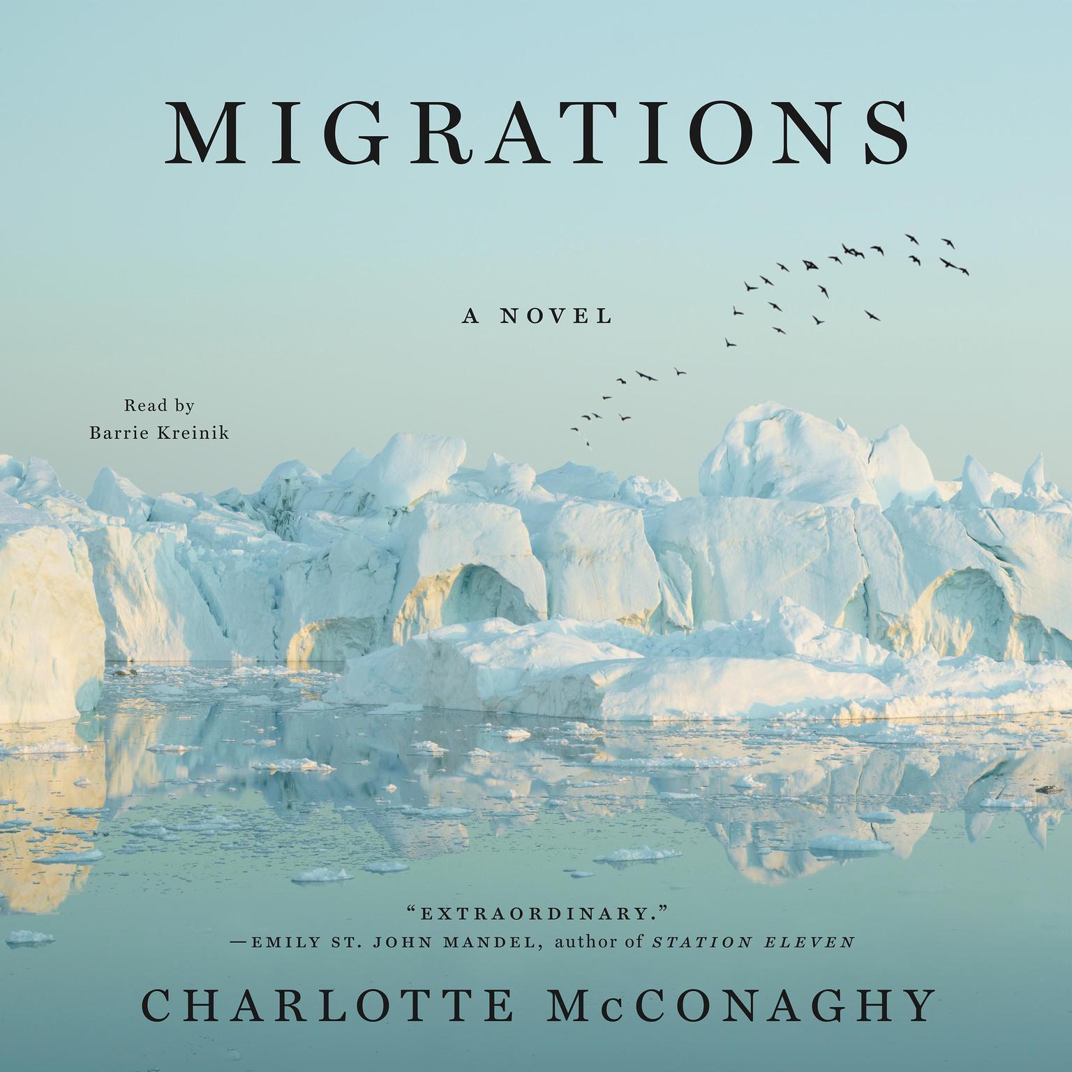 Printable Migrations: A Novel Audiobook Cover Art
