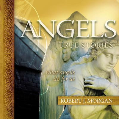 Angels: True Stories Audiobook, by Robert Morgan