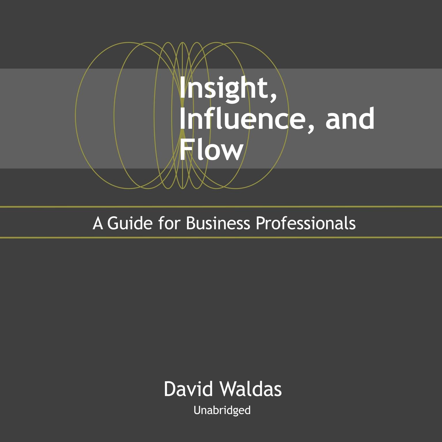 Insight, Influence, and Flow: A Guide for Business Professionals Audiobook, by David Waldas
