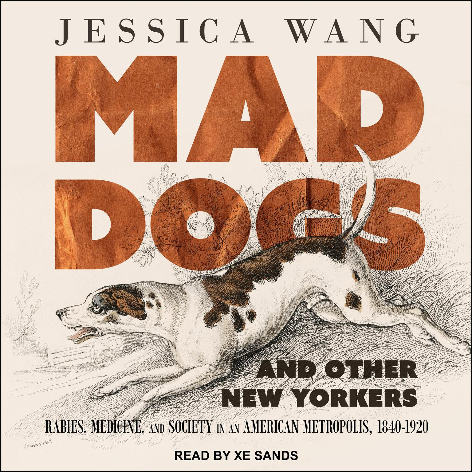 Printable Mad Dogs and Other New Yorkers: Rabies, Medicine, and Society in an American Metropolis, 1840–1920 Audiobook Cover Art