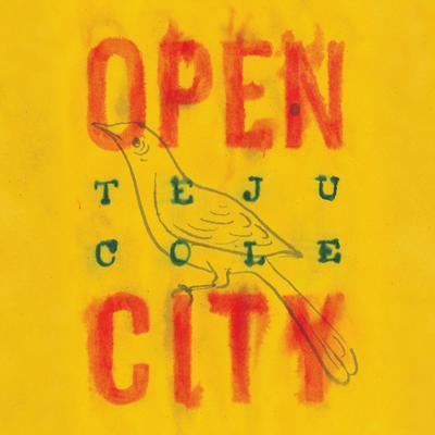 Open City: A Novel Audiobook, by Teju Cole