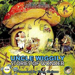 Uncle Wiggily Stories Of Wonder Audiobook, by Howard Garis