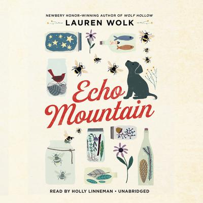 Echo Mountain Audiobook, by