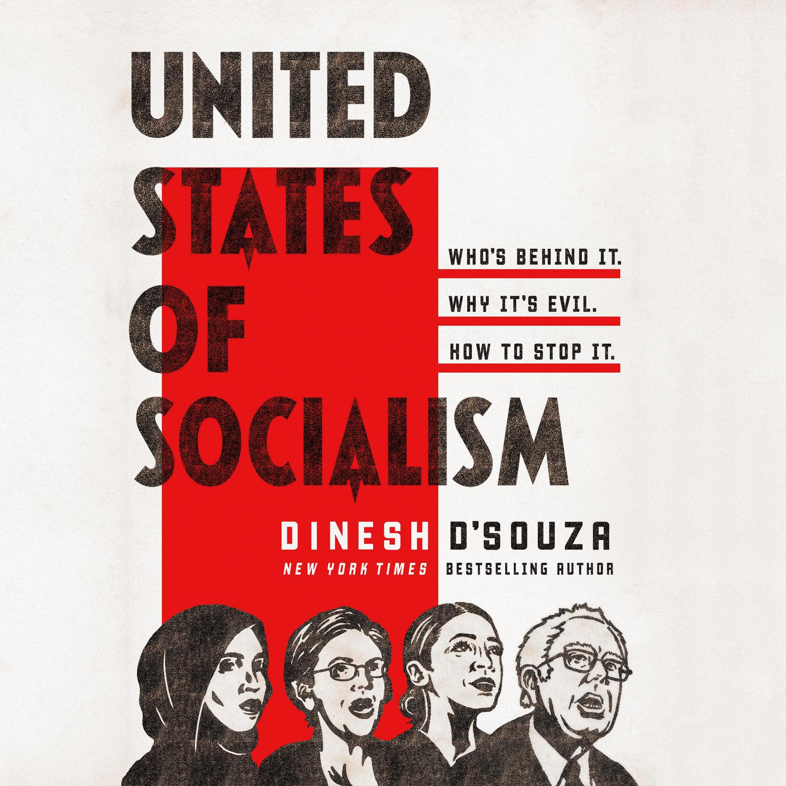Printable United States of Socialism: Who's Behind It. Why It's Evil. How to Stop It. Audiobook Cover Art
