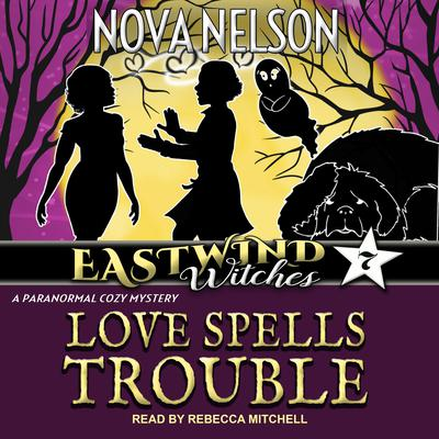 Love Spells Trouble Audiobook, by