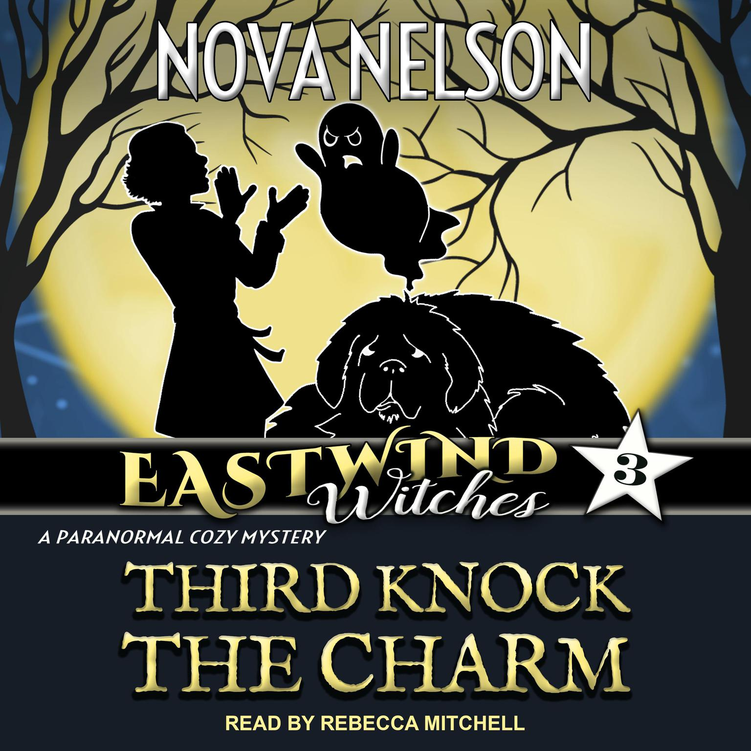 Third Knock the Charm Audiobook, by Nova Nelson