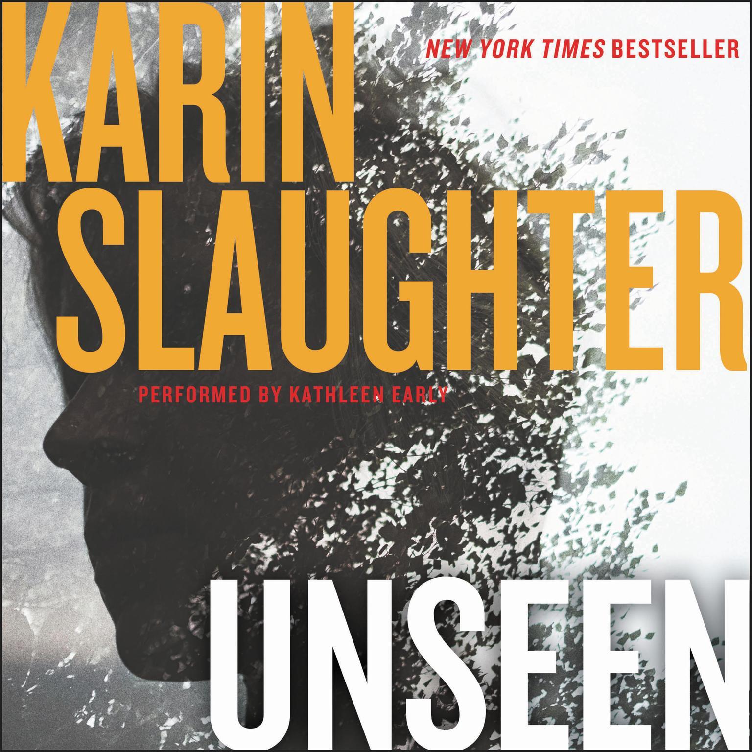 Unseen: A Novel Audiobook, by Karin Slaughter