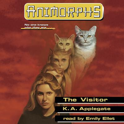 The Visitor Audiobook, by
