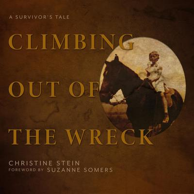 Climbing Out of the Wreck: A Survivor's Tale Audiobook, by Christine Stein