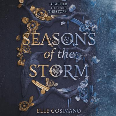 Seasons of the Storm Audiobook, by Elle Cosimano